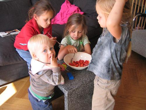 Sibren, Tessa, Isa en Marijn eten aardbeien