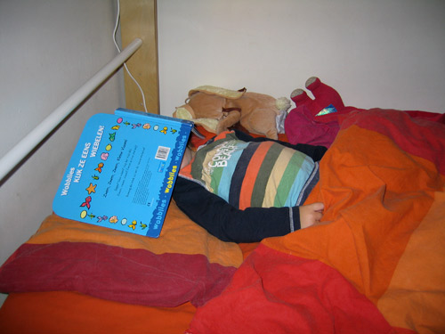 Lekker lezen in bed